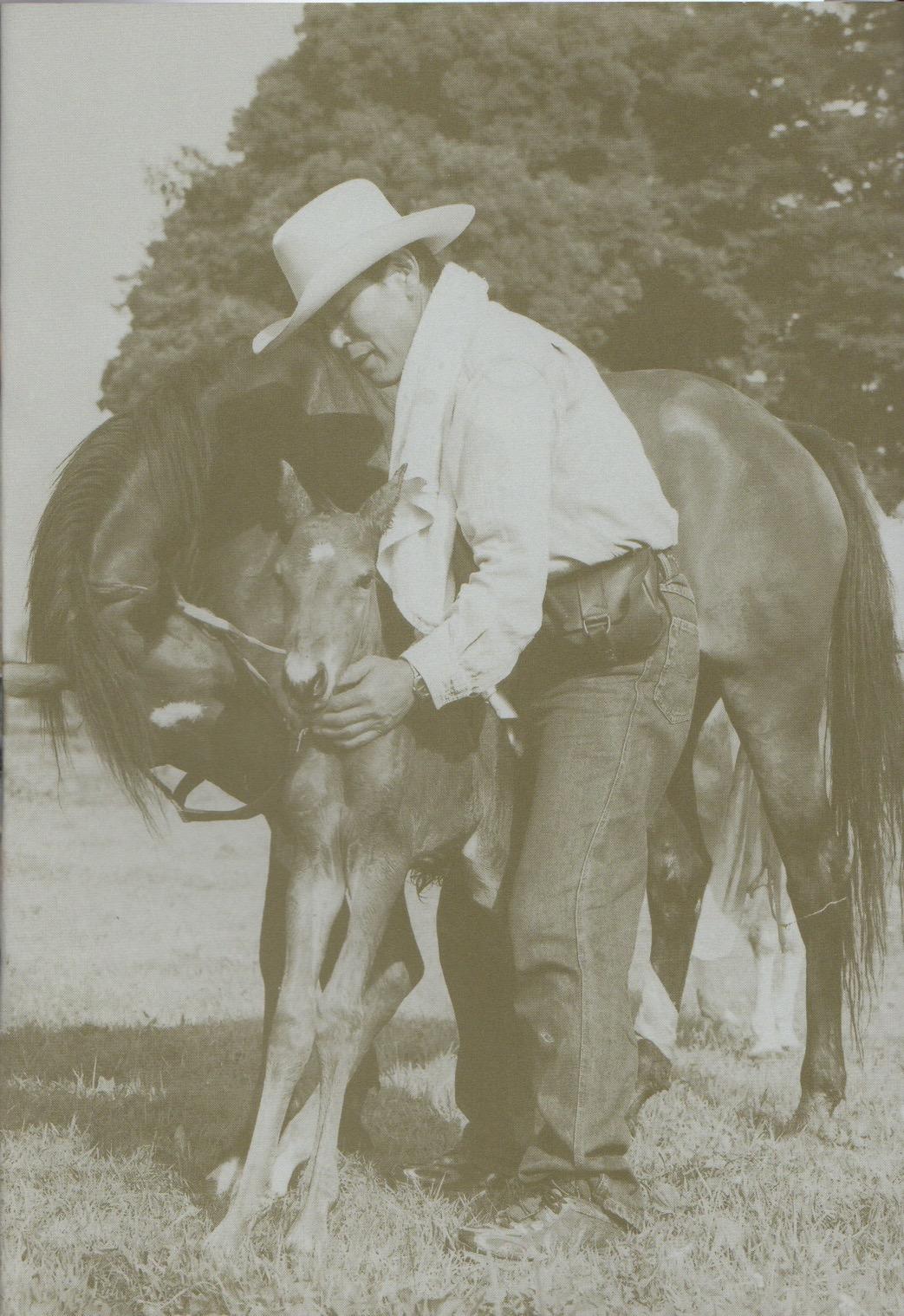 大和ホースパークは1976年創業当時からハンドメイド・ホースで安全な乗馬を提供しています。